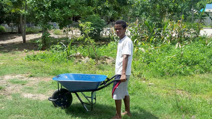 11. A new wheel barrow