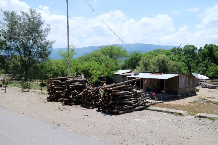 2-firewood-for-sale-is-common-just-outside-of-dili