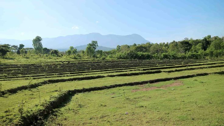 fallow-rice-fields-with-saburai-mountain-in-the-distance
